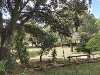 Praderas del Huerto de San Antonio